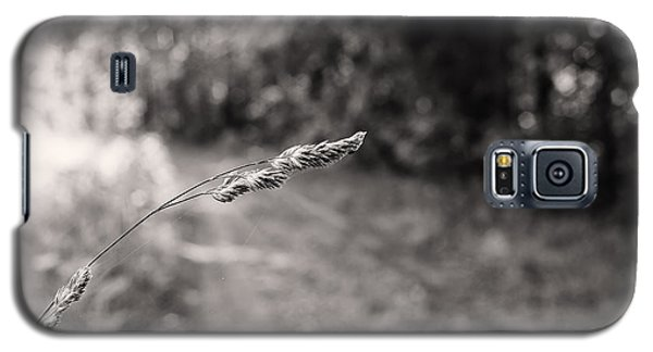 Grass Over Dirt Road Galaxy S5 Case