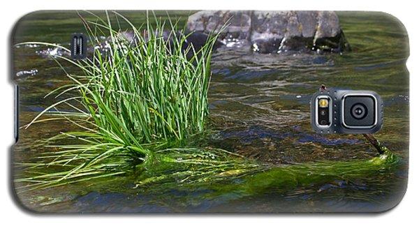 Grass Rock Stick Galaxy S5 Case