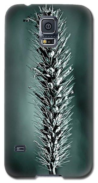Grass Seedhead In Deep Cyan Galaxy S5 Case