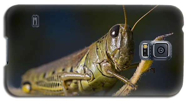 Galaxy S5 Case featuring the photograph Grasshopper by Art Whitton