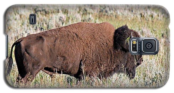 Grassy Horn Galaxy S5 Case