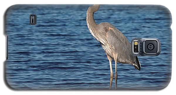 Galaxy S5 Case featuring the photograph Great Blue Heron by Art Whitton