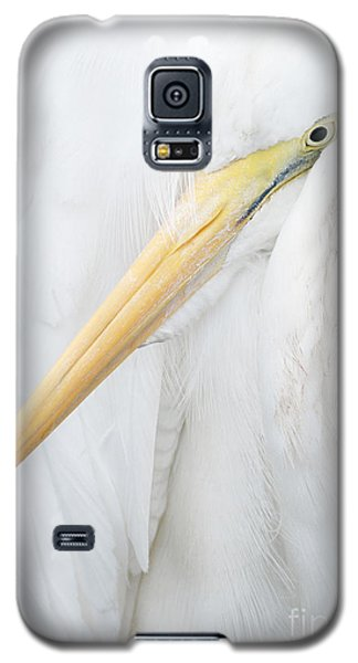 Galaxy S5 Case featuring the photograph Great Egret by Doug Herr