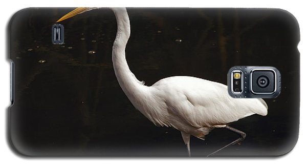 Galaxy S5 Case featuring the photograph Great Egret Hunting by Art Whitton