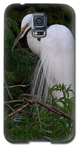 Galaxy S5 Case featuring the photograph Great Egret Nesting by Art Whitton