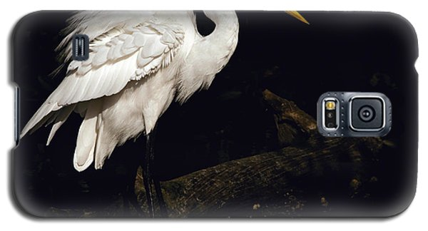 Great Egret Ruffles His Feathers Galaxy S5 Case