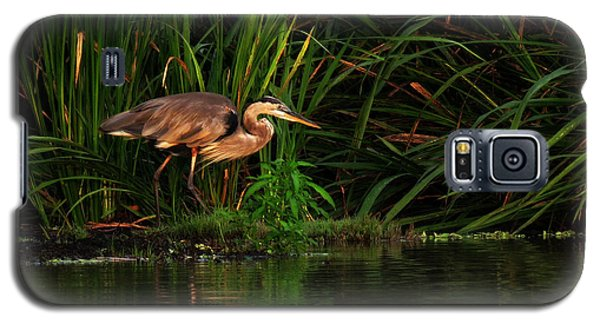 Galaxy S5 Case featuring the photograph Great Heron by Deborah Smith