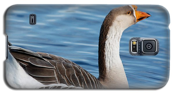 Greater White-fronted Goose Paddling Away Galaxy S5 Case by Ann Murphy