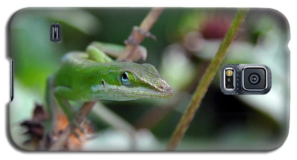 Galaxy S5 Case featuring the photograph Green Anole by Kay Lovingood