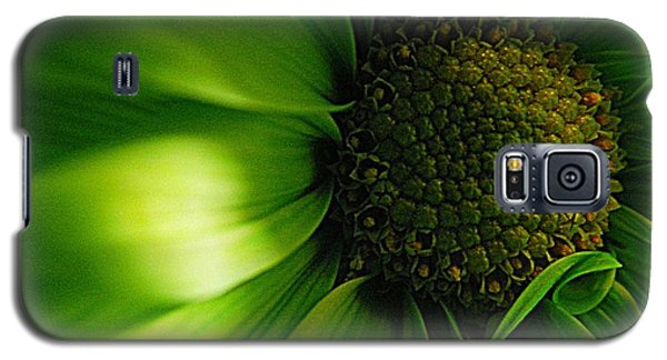 Galaxy S5 Case featuring the photograph Green Daisy by Robin Dickinson