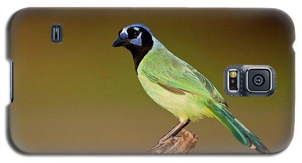 Green Jay 2 Galaxy S5 Case