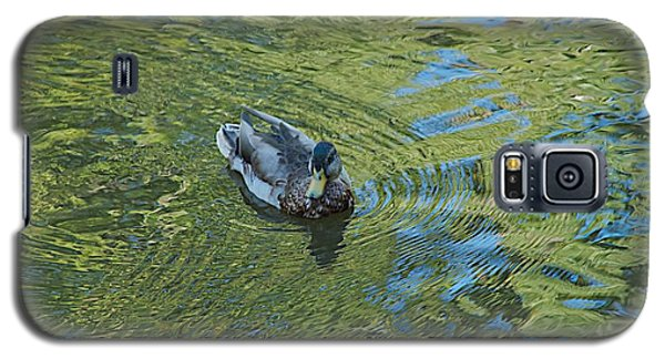 Galaxy S5 Case featuring the photograph Green Pool by Joseph Yarbrough