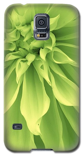 Galaxy S5 Case featuring the photograph Green Sherbet by Bruce Bley