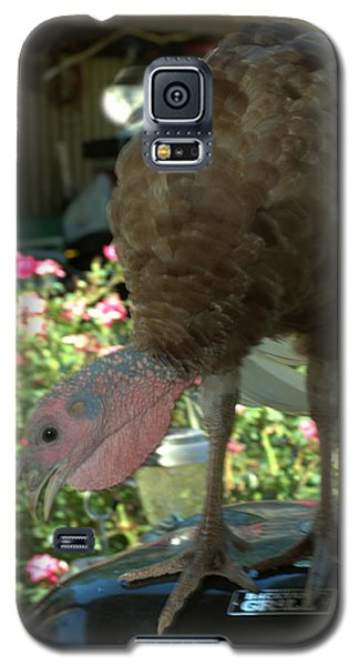 Grill Turkey Anyone Redneck Style Galaxy S5 Case