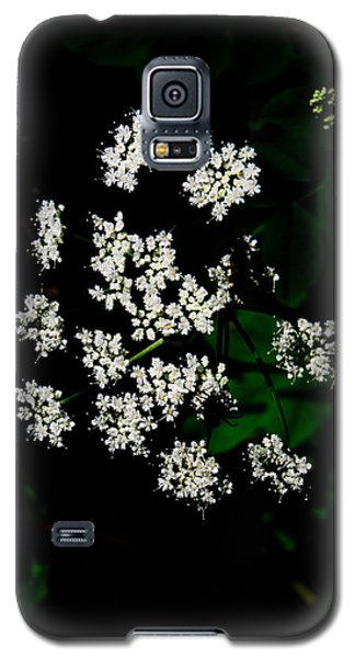 Ground-elder Galaxy S5 Case