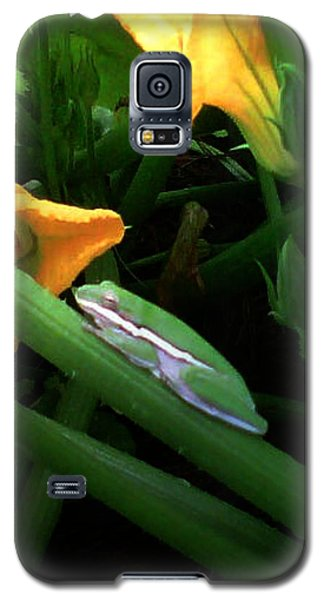 Galaxy S5 Case featuring the photograph Guardian Of The Zucchini by George Pedro