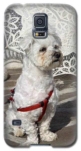 Galaxy S5 Case featuring the photograph Guardian Of Umbrellas 2 by Raffaella Lunelli