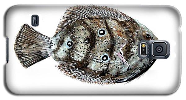 Gulf Flounder Galaxy S5 Case