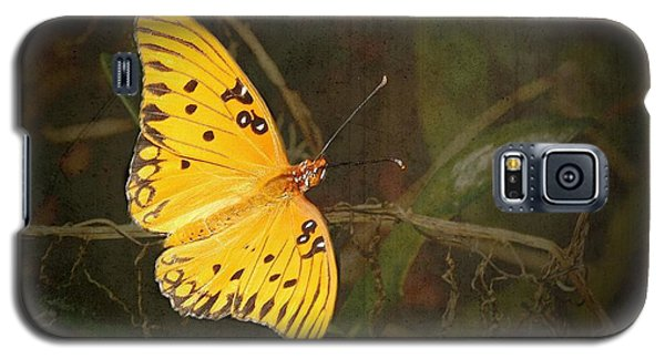 Gulf Fritillary Butterfly Galaxy S5 Case