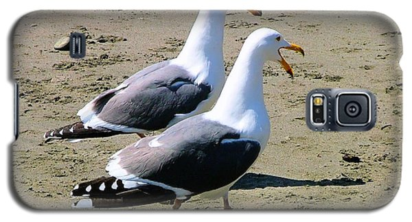 Galaxy S5 Case featuring the photograph Gull Talk by Wendy McKennon