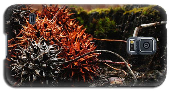 Gumballs Galaxy S5 Case
