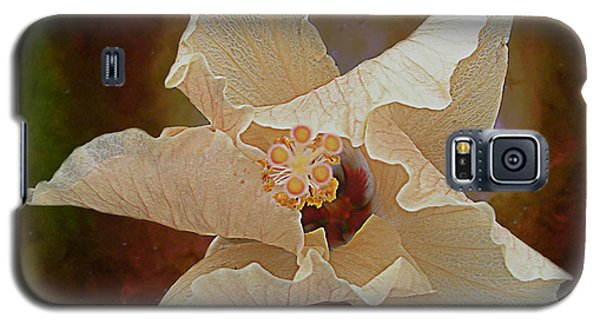 Hibiscus Floats In Space Galaxy S5 Case by Barbara Middleton