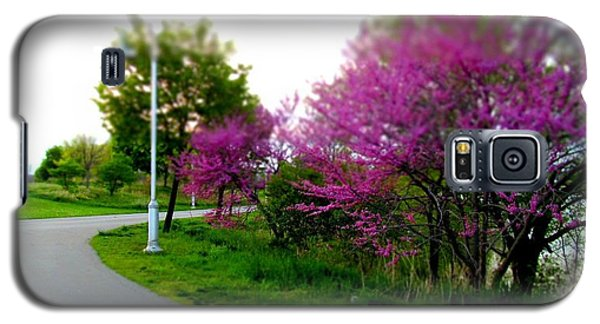 Galaxy S5 Case featuring the photograph Hamilton Harbor Front Pretty In Pink by Danielle  Parent