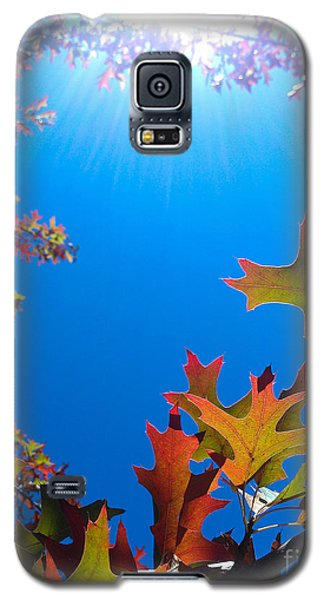 Galaxy S5 Case featuring the photograph Happy Autumn by CML Brown