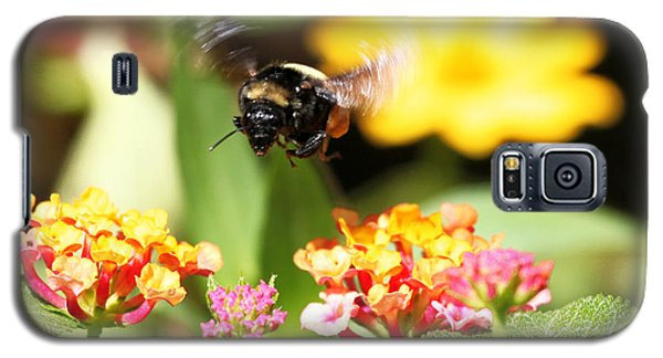 Galaxy S5 Case featuring the photograph Happy Bee by Luana K Perez