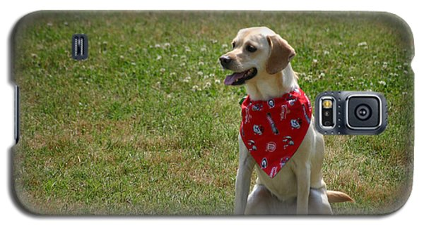 Happy Dog Galaxy S5 Case