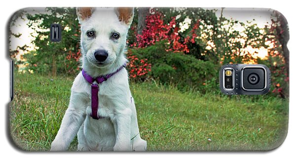 Happy Puppy Galaxy S5 Case