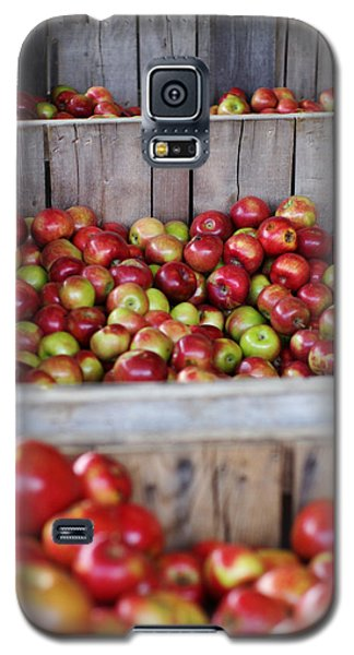 Galaxy S5 Case featuring the photograph Harvest Time by Linda Mishler