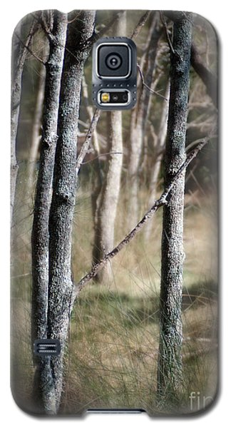 Galaxy S5 Case featuring the photograph Haunt Of The Fringe Dwellers by Vicki Ferrari