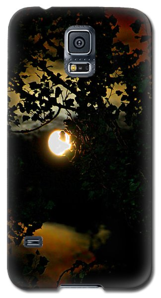 Galaxy S5 Case featuring the photograph Haunting Moon IIi by Jeanette C Landstrom