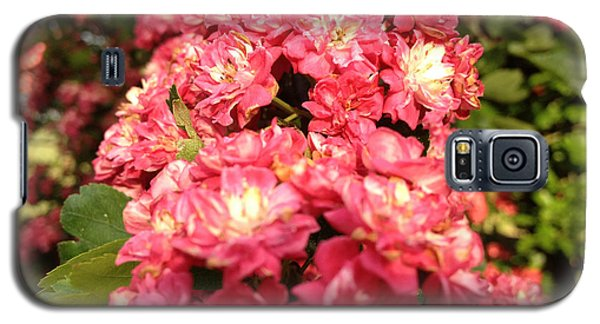 Hawthorn Flowers Galaxy S5 Case