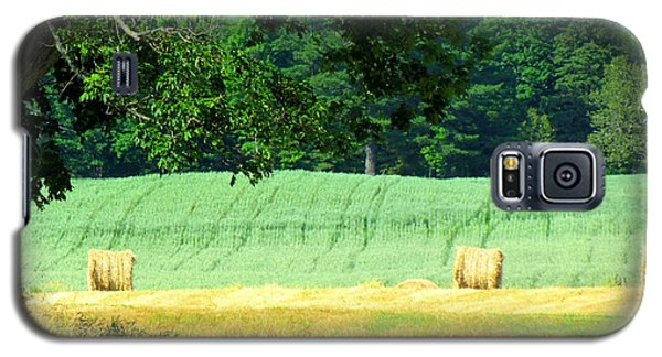 Hay Landscape Galaxy S5 Case by France Laliberte