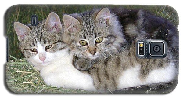 Haystack Buddies Galaxy S5 Case