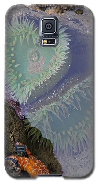 Galaxy S5 Case featuring the photograph Heart Of The Tide Pool by Mick Anderson