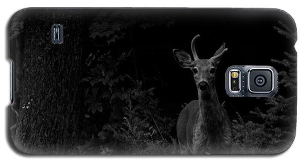 Hello Deer Galaxy S5 Case by Cheryl Baxter