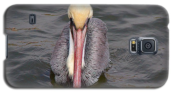 Galaxy S5 Case featuring the photograph Here's Looking At You by Roena King
