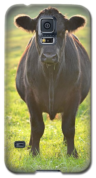 Here's The Beef Galaxy S5 Case by JD Grimes