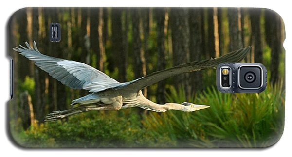 Galaxy S5 Case featuring the photograph Heron In Flight by Rick Frost