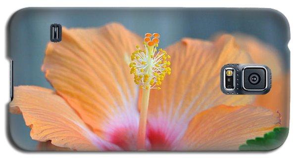 Hibiscus 5 Galaxy S5 Case