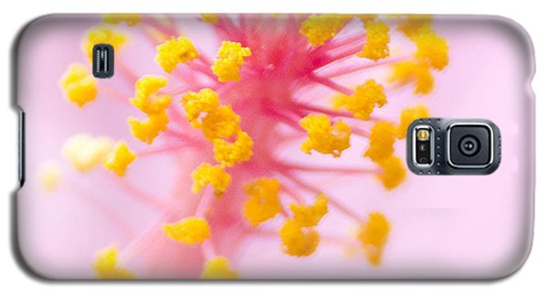 Galaxy S5 Case featuring the photograph Hibiscus In Pink And Yellow by Anne Rodkin