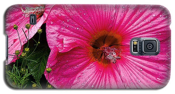 Galaxy S5 Case featuring the photograph Hibiscus by Michael Friedman