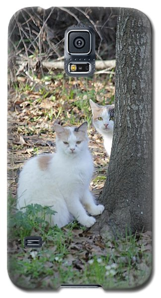 Galaxy S5 Case featuring the photograph Hide 'n Seek by Rdr Creative