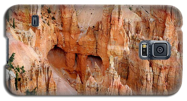 Galaxy S5 Case featuring the photograph Hideaway  by Vicki Pelham
