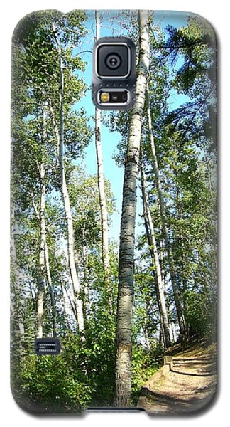 Galaxy S5 Case featuring the photograph Hiking Trail by Jim Sauchyn