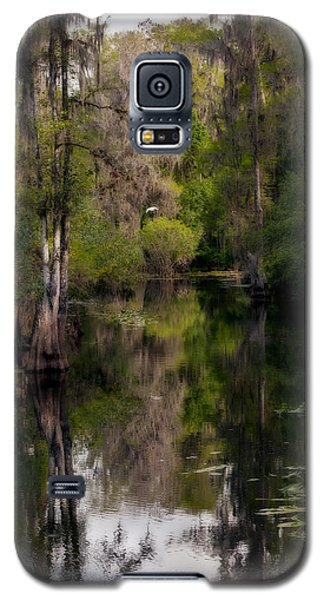 Galaxy S5 Case featuring the photograph Hillsborough River In March by Steven Sparks