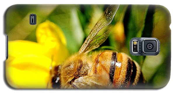 Galaxy S5 Case featuring the photograph Honey Bee by Chriss Pagani